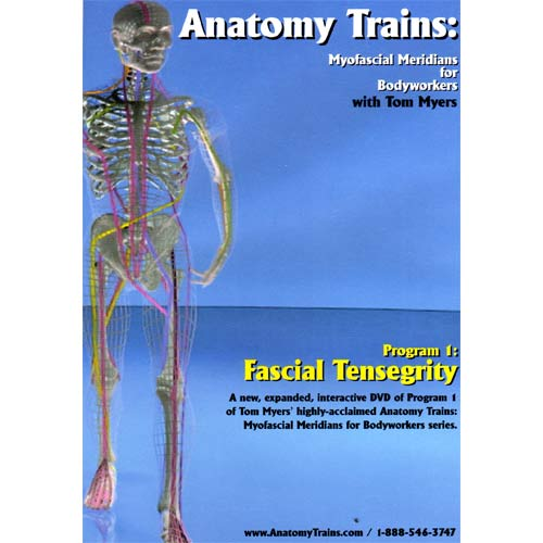 Anatomy Trains Vol 1: Fascial Tensegrity DVD