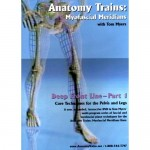 Anatomy Trains Vol 8: Deep Front Line – Lower Portion DVD