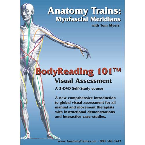 BodyReading 101: Visual Assessment