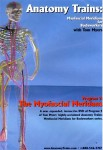 Anatomy Trains Vol 2: Myofascial Meridians DVD