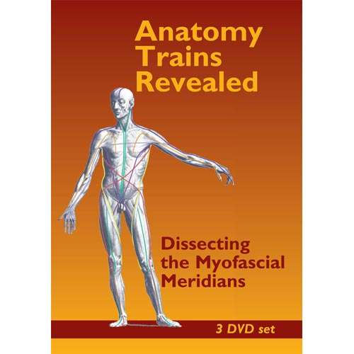 Anatomy Trains Revealed: Dissecting the Myofascial Meridian