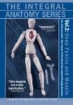 Integral Anatomy Series: Volume 2