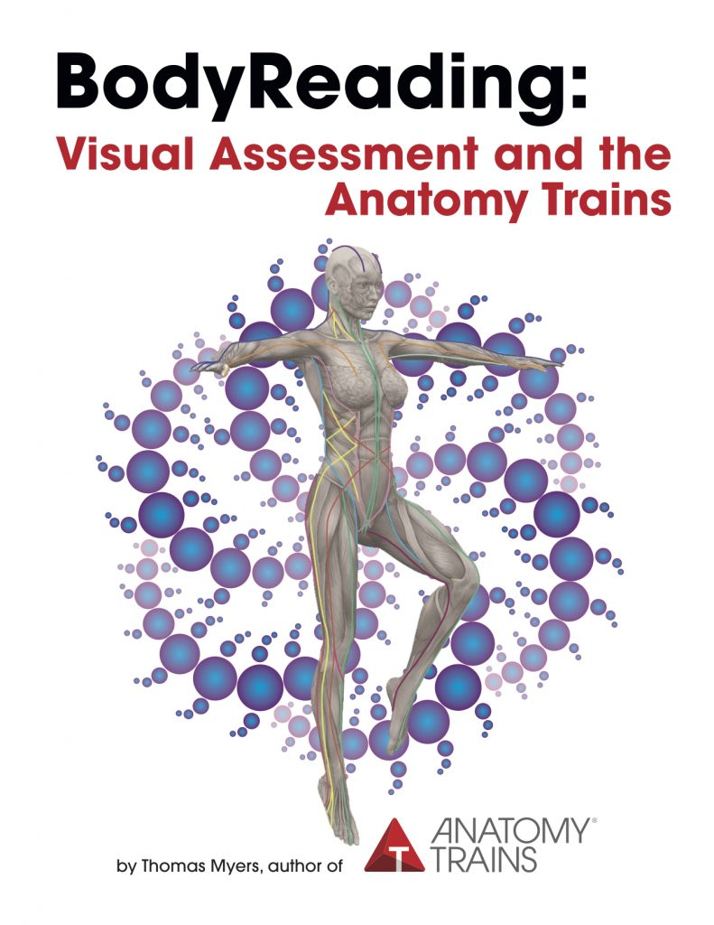 BodyReading: Visual Assessment and the Anatomy Trains by Tom Myers