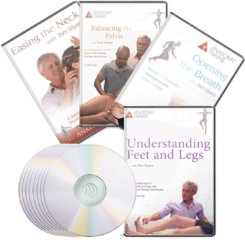 Regional Technique Bundle I