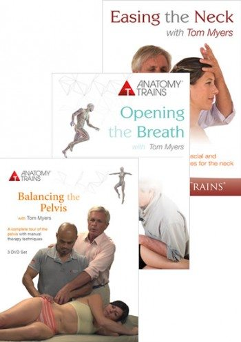 Pelvis, Neck & Breath Bundle
